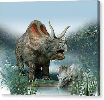 Triceratops Old And Young Canvas Print by Mikkel Juul Jensen
