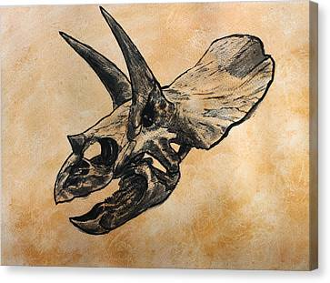 Triceratops Skull Canvas Print by Harm  Plat