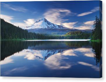 Trillium Escape Canvas Print by Darren  White