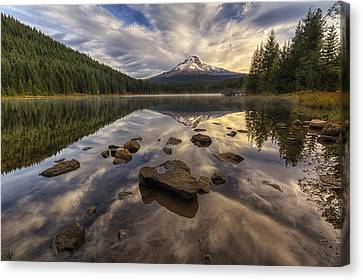 Trillium Reflection Canvas Print by Mark Kiver