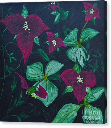 Trilliums Canvas Print by Sally Rice