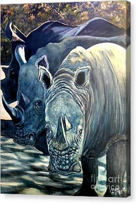Trio Of Rhino Canvas Print by Caroline Street