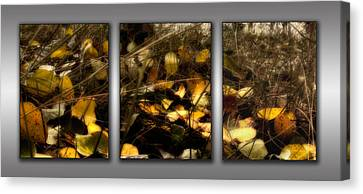 Triptych - Autumn Forest Floor Canvas Print by Ellen Heaverlo