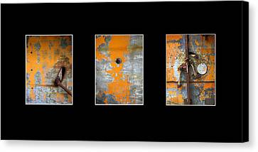 Triptych Old Metal Series Canvas Print by Ann Powell