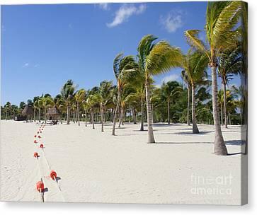 Tropical Beach - Mayan Riviera - Yucatan Peninsula - Mexico Canvas Print by Renata Ratajczyk
