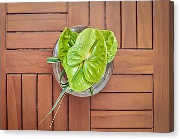Tropical Flower Canvas Print by Tom Gowanlock
