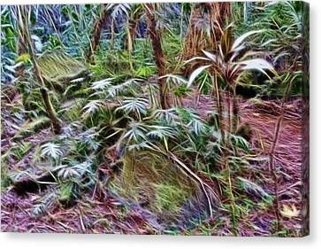 Tropical Forest Floor Canvas Print by Linda Phelps