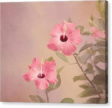 Tropical Hibiscus Canvas Print by Kim Hojnacki