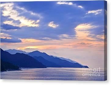 Tropical Mexican Coast At Sunset Canvas Print by Elena Elisseeva