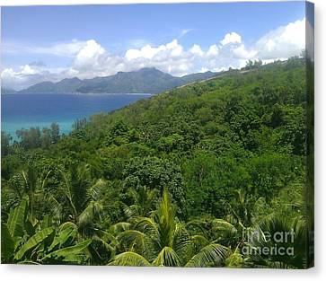 Tropical Seychelles Canvas Print by Ted Williams