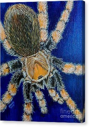 Tropical Tarantula  Canvas Print by Richard Brooks