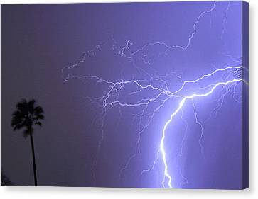 Tropical Thunderstorm Night  Canvas Print by James BO  Insogna