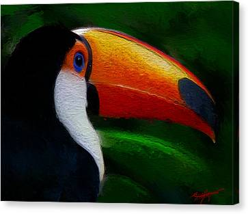 Tropical Toucan  Canvas Print by Anthony Fishburne