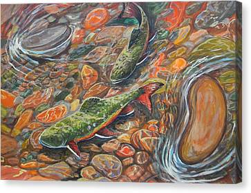 Trout Stream Canvas Print by Jenn Cunningham