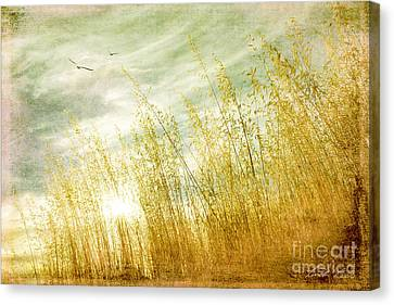 True Love Transcends Time Canvas Print by Linda Lees