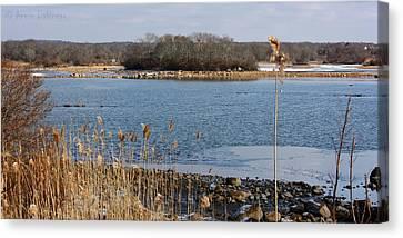 Trustom Pond Canvas Print by Anne Babineau
