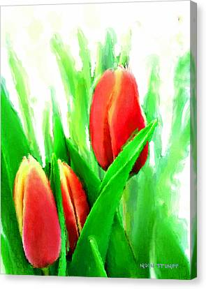 Tulips Canvas Print by Moon Stumpp