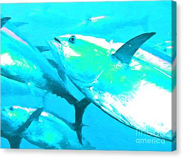 Tuna Fish P88 Canvas Print by Wingsdomain Art and Photography