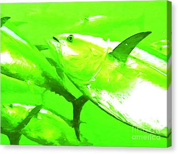 Tuna Fish Canvas Print by Wingsdomain Art and Photography