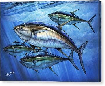 Tuna In Advanced Canvas Print by Terry Fox