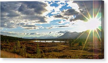 Tundra Burst Canvas Print by Chad Dutson