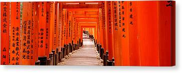 Tunnel Of Torii Gates, Fushimi Inari Canvas Print by Panoramic Images