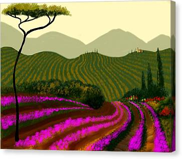 Tuscan Fields Of Color Canvas Print by Larry Cirigliano