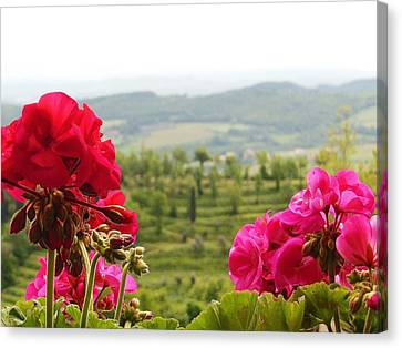 Tuscan Hills And Flowers Canvas Print by Marilyn Dunlap