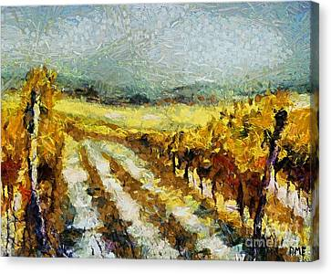 Tuscan Vineyard Canvas Print by Dragica  Micki Fortuna