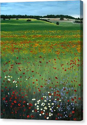 Tuscany Flower Field Canvas Print by Cecilia Brendel