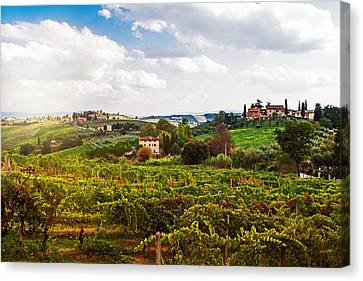 Tuscany Italy Vineyard And Countryside Canvas Print by Susan Schmitz