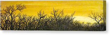 Twilight Partial Canvas Print by Erik Coryell