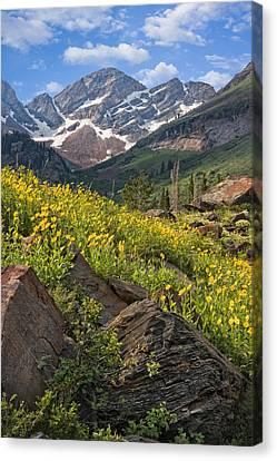 Twin Peaks Wilderness Utah Canvas Print by Utah Images