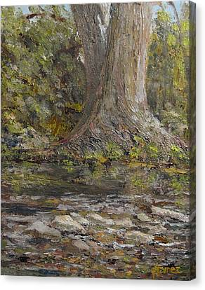 Twin Sentinels On The Cibolo Canvas Print by Pauly Tamez
