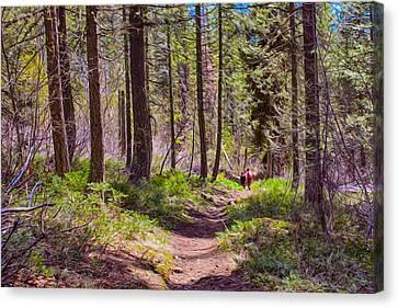 Twisp River Trail Canvas Print by Omaste Witkowski