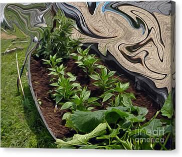 Twisted Garden Canvas Print by Crystal Harman