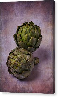 Two Artichokes Canvas Print by Garry Gay