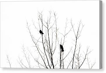 Two Crows Canvas Print by Marilyn Hunt