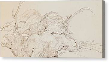 Two Dead Stags Canvas Print by Sir Edwin Landseer