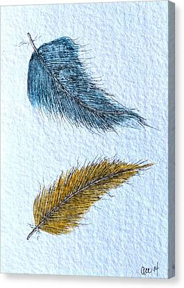 Two Feathers Canvas Print by Anne Clark