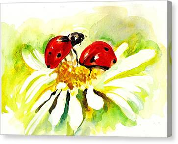 Two Ladybugs In Daisy After My Original Watercolor Canvas Print by Tiberiu Soos