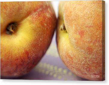 Two Peaches On A Purple Background Canvas Print by Beverly Brown