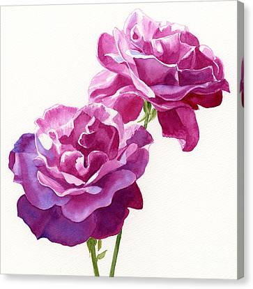 Two Red Violet Rose Blossoms Square Design Canvas Print by Sharon Freeman