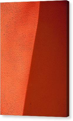 Two Shades Of Shade Canvas Print by Peter Tellone