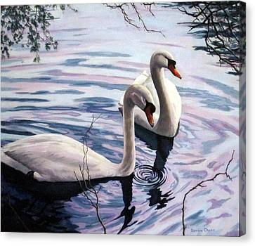 Two Swans A Swimming Canvas Print by Sandra Chase