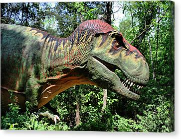 Tyrannosaurus Rex  T. Rex Canvas Print by Kristin Elmquist