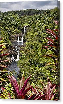 Umauma Falls Canvas Print by Mike Herdering