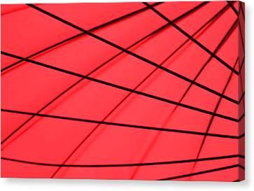 Red And Black Abstract Canvas Print by Tony Grider