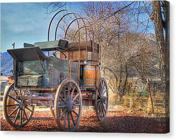 Uncovered Wagon Canvas Print by Donna Kennedy
