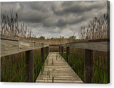 Under The Boardwalk Canvas Print by Jonathan Davison